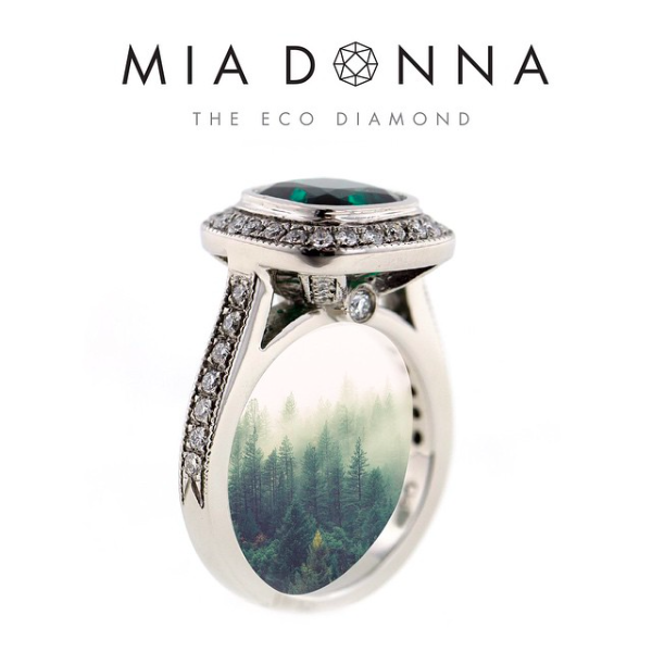 Can Your MiaDonna Engagement Ring Change A Life? | Environmental Impact